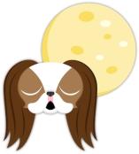 full moon dog